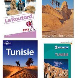 Guide de voyage Tunisie : le bon choix – partie 1