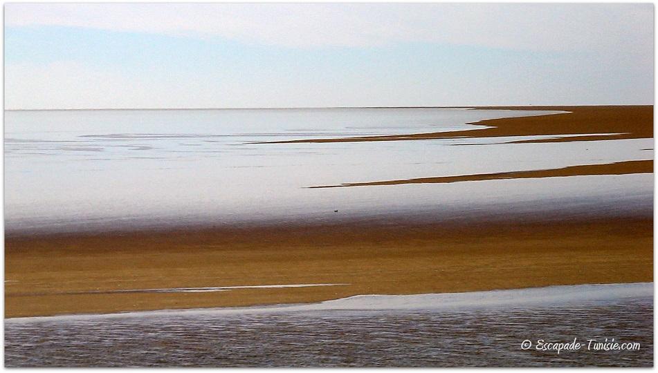 Lac salé : les chotts du sud tunisien en images