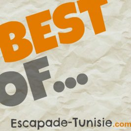 Conseils voyage Tunisie : Best-of des articles