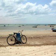 D'une autre amoureuse de la Tunisie…